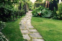 trädgård gång