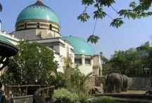 Elephanthouse Budapest Zoo
