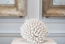 Styling with Seashells