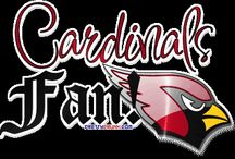 Arizona Cardinals / by Amy Carter