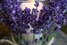Candle with lavendar
