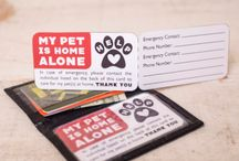 Great Ideas for Pet Owners