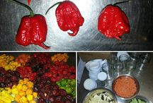 Peperoncino HOT