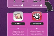 Infographics (Animals)