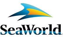 Sea World Orlando / Sea World Orlando has year round fun. From Wild Days in January all the way through to their Christmas Spectacular in December, you won't want to miss a thing.