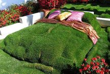 Backyard Living / by Jennifer Moenich
