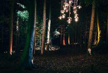 { Woodland Wonderland Wedding Photoshoot }
