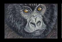 Vídeos paso a paso (Cómo pintar animales) / Los pasos más destacados en el proceso de elaboración de las obras de pinturas de animales de Gabriela del Olmo. Animales hiperrealistas creados con pintura pastel.