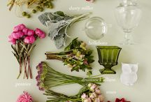 Flower Guide / From A to Zinnias, we will be sharing our favorite flowers and naming what's what in the world of flowers