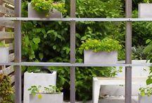 Gardening / by (◡‿◡✿) Sylmara