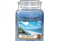 Yankee Cande