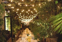 Party Decor - / by Lydia Bohs