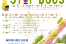 Essential Oils / Aromatherapy / young living