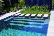 Schwimm Teich