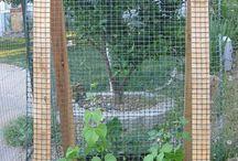 Garden - Veg Garden