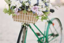 Pretty Bicycle & Flowers