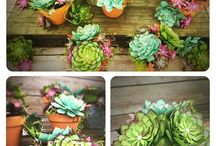 paper floweres