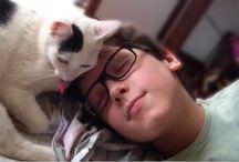 Love cats / gatos