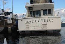 BEACH SEADUCTRESS