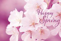 spring ( lente)
