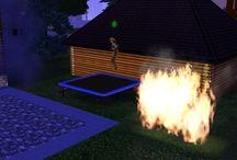 Crazy Sims