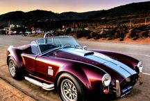 Shelby's I love / by Colin Powers