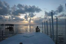 Belize, langouste et noix de coco / Aahh le Belize. Les îles paradisiaques et les plats des tropiques, un vrai rêve éveillé !