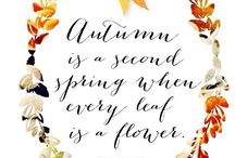 Seasons!!