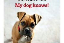 Dogs quotes / 4dogs lovers; quotes sayings