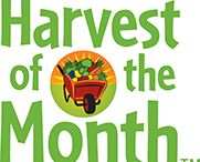 HARVEST OF THE MONTH rocks in School Meals / Great resources, recipes and inspiration for Harvest of the Month Programs