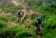 trail and enduro bikes
