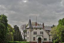 Przerzeczyn - Zdrój - Pałac / Pałac w Przerzeczynie Zdroju wzniesiony w 1896 roku dla rodziny von Pfeil. Wystawiony na sprzedaż.  Palace in Przerzeczynie of the Spring erected in 1896 for the von Pfeil family. Put up for sale.