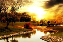 Beautiful Scenes