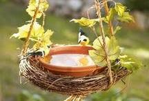 Kuş banyosu