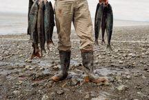 Balıkçı  / Fisherman
