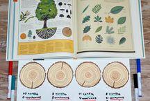 Обучение. Природа
