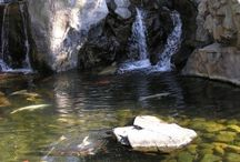 Waterfall gardens / by Casgroup-Eng.Hassan