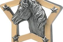 Equestrian trophies and awards / All things horse-related