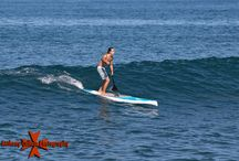 Stand Up Paddle Boarding / Stand up paddle surfing or stand up paddle boarding is an emerging global sport with a Hawaiian heritage. The sport is a recent form of surfing, and has emerged as a way for surfers to paddle longer distances. The sport of stand up paddle boarding has, in less than ten years, spread from surf beaches to nearly ever other type of watercourse. Races are held on lakes, large rivers and canals; paddlers navigate river rapids and ride standing waves that are common therein; gliding is the practice of covering long distances along sea coasts, often using tail winds to aid the trip. A related, traditional sport, paddleboarding has been done kneeling on a board and paddling with the hands, similar to a butterfly swimming stroke. However using a paddle is now sometimes incorrectly called paddleboarding. Stand up paddlers wear a wide variety of wet suits and other clothing, depending on both water and air temperature since most of their time is spent standing on the board.