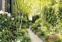 Penthouse gardens