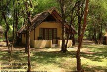 Luxury Safari Lodge in South Africa