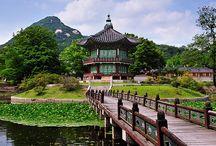 Mustgo:Korea