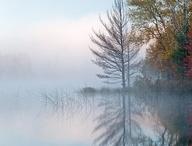 Nebelstimmungen