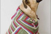 Crochet for Pets / by Molly MaGuire
