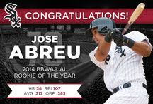 Jose Abreu - Rookie of the Year / Jose Abreu was unanimously voted the 2014 AL Jackie Robinson Rookie of the Year by the BBWAA.