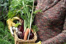 Gardening Awesomeness / by Crystal Adkinson