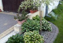 unelmien puutarha