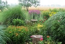 Garden Style  / by Jaime Tapke-Moser