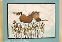 Heste kort 1