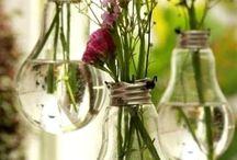 Plantas ideas